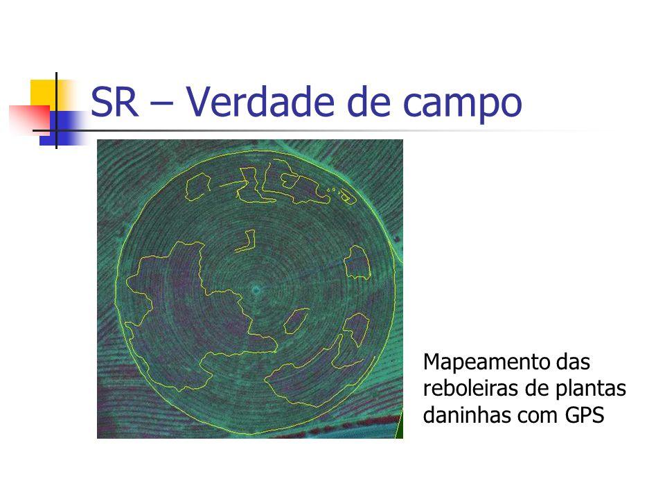 SR – Verdade de campo Mapeamento das reboleiras de plantas daninhas com GPS
