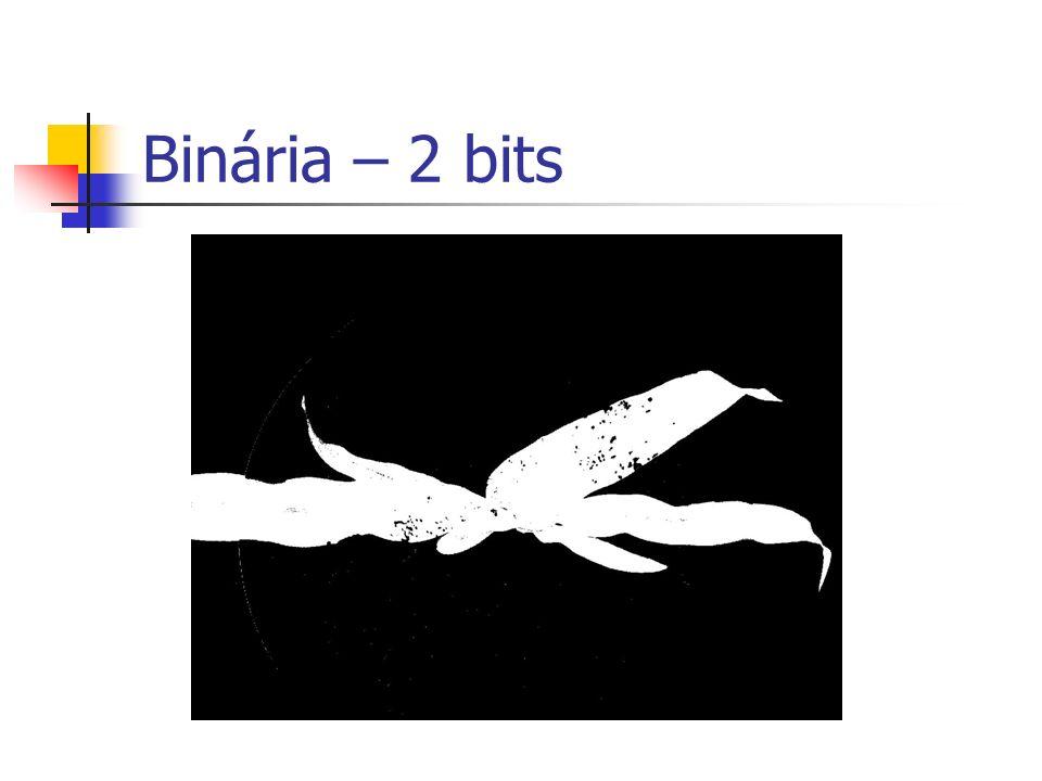Binária – 2 bits