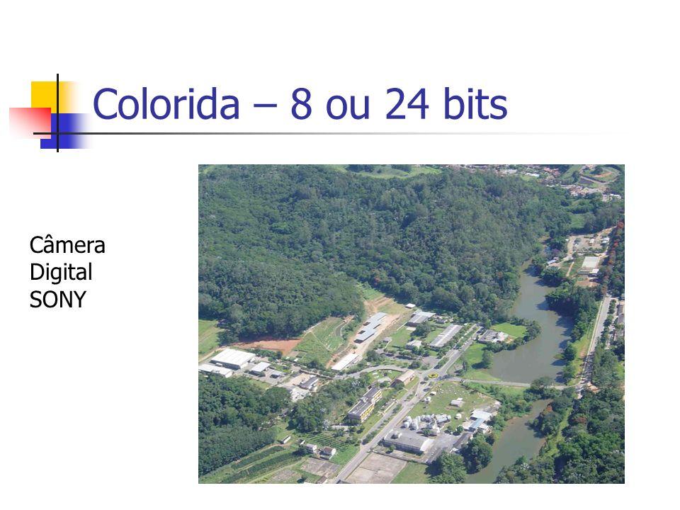 Colorida – 8 ou 24 bits Câmera Digital SONY