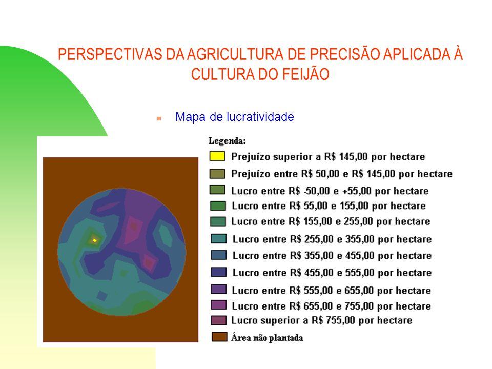 PERSPECTIVAS DA AGRICULTURA DE PRECISÃO APLICADA À CULTURA DO FEIJÃO n Mapa de lucratividade