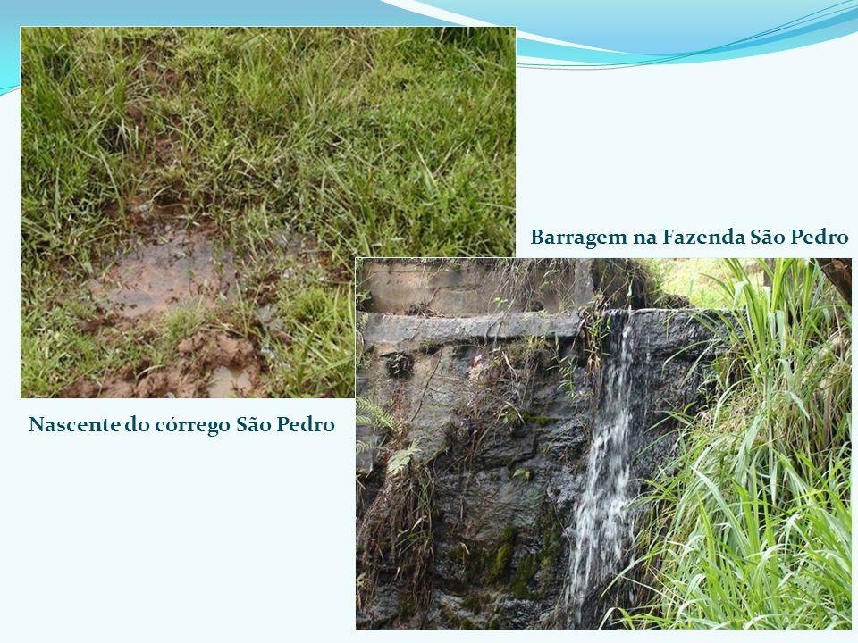 Nascente do córrego São Pedro Barragem na Fazenda São Pedro