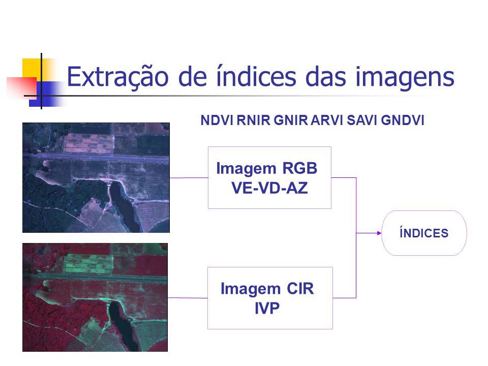 Extração de índices das imagens NDVI RNIR GNIR ARVI SAVI GNDVI Imagem RGB VE-VD-AZ Imagem CIR IVP ÍNDICES