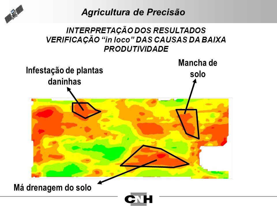 INTERPRETAÇÃO DOS RESULTADOS VERIFICAÇÃO in loco DAS CAUSAS DA BAIXA PRODUTIVIDADE Infestação de plantas daninhas Mancha de solo Má drenagem do solo A