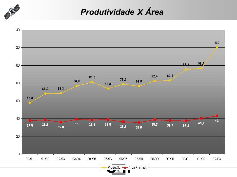 Produtividade X Área