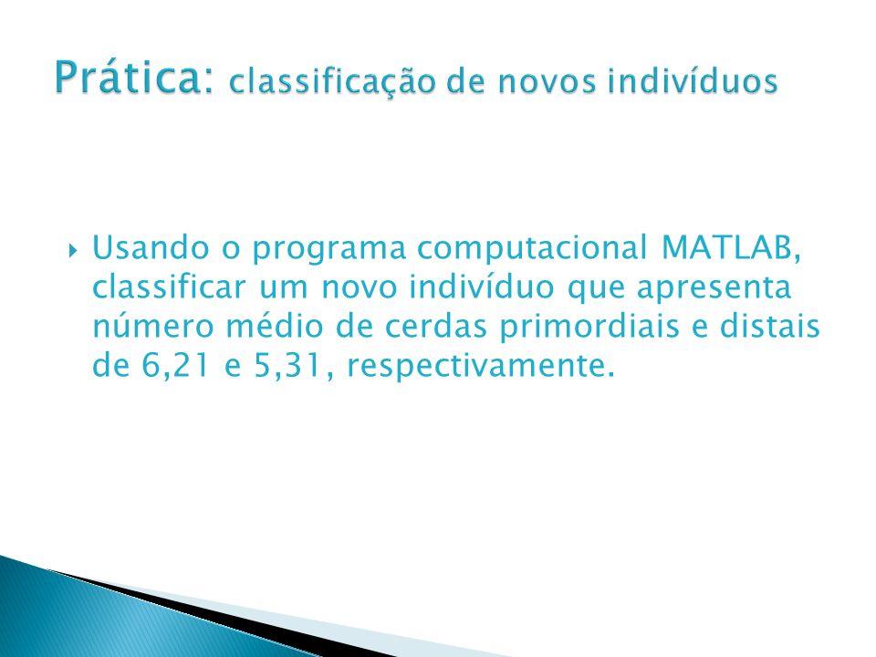 Usando o programa computacional MATLAB, classificar um novo indivíduo que apresenta número médio de cerdas primordiais e distais de 6,21 e 5,31, respe