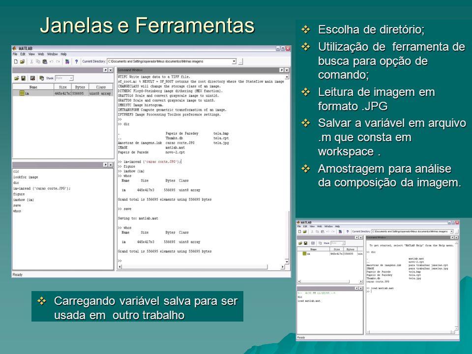 Janelas e Ferramentas Janelas e Ferramentas Escolha de diretório; Escolha de diretório; Utilização de ferramenta de busca para opção de comando; Utili
