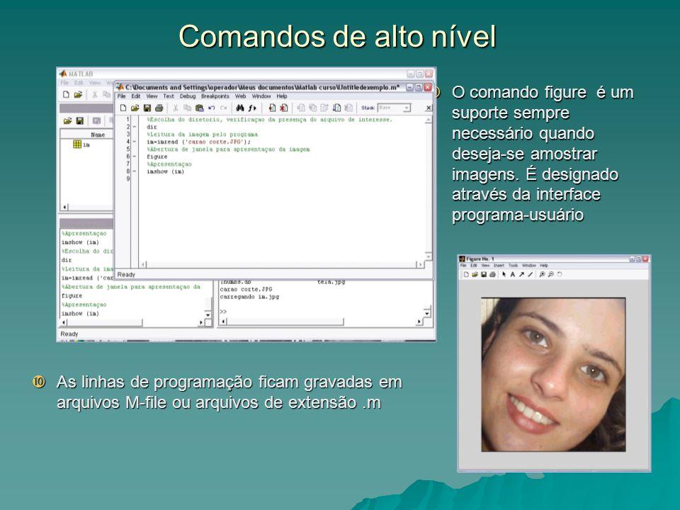 Comandos de alto nível As linhas de programação ficam gravadas em arquivos M-file ou arquivos de extensão.m As linhas de programação ficam gravadas em