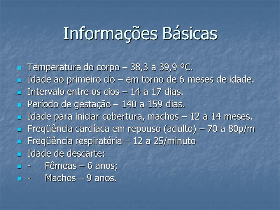 Informações Básicas Temperatura do corpo – 38,3 a 39,9 ºC. Temperatura do corpo – 38,3 a 39,9 ºC. Idade ao primeiro cio – em torno de 6 meses de idade