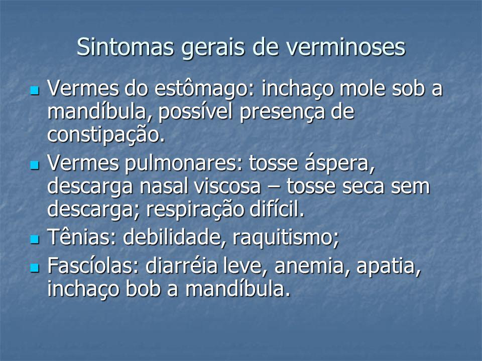 Sintomas gerais de verminoses Vermes do estômago: inchaço mole sob a mandíbula, possível presença de constipação. Vermes do estômago: inchaço mole sob