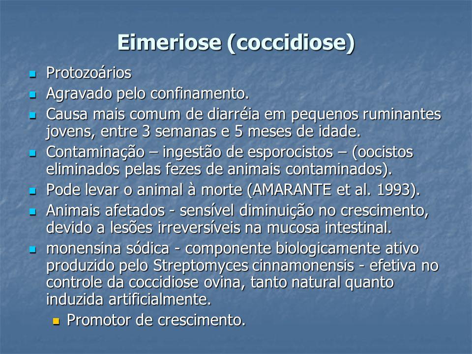 Eimeriose (coccidiose) Protozoários Protozoários Agravado pelo confinamento. Agravado pelo confinamento. Causa mais comum de diarréia em pequenos rumi