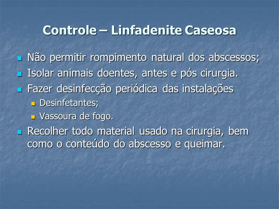 Controle – Linfadenite Caseosa Não permitir rompimento natural dos abscessos; Não permitir rompimento natural dos abscessos; Isolar animais doentes, a