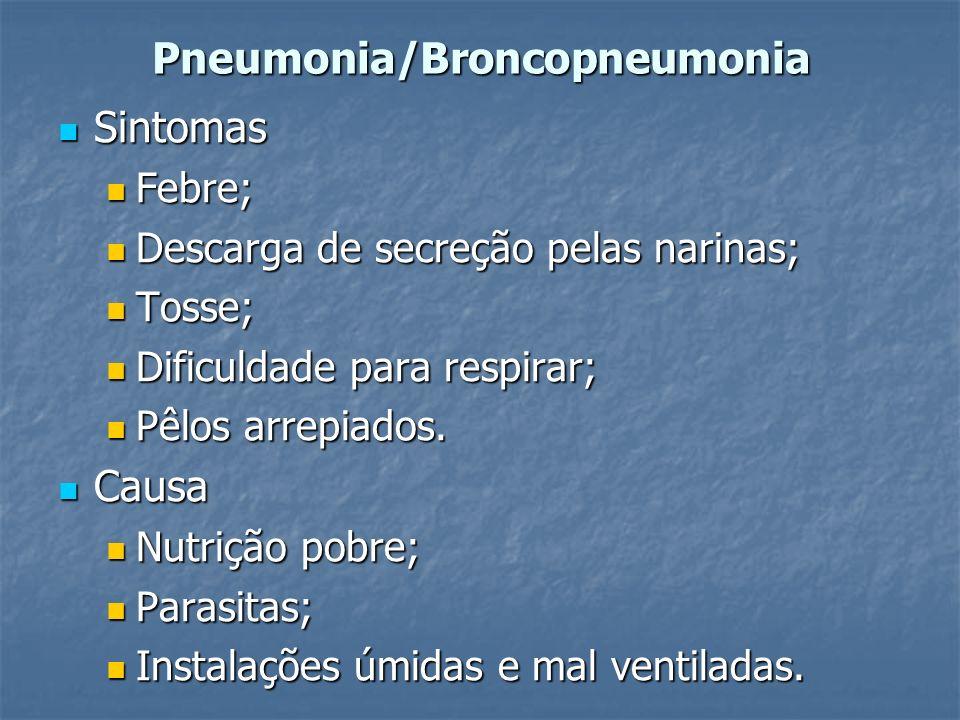 Pneumonia/Broncopneumonia Sintomas Sintomas Febre; Febre; Descarga de secreção pelas narinas; Descarga de secreção pelas narinas; Tosse; Tosse; Dificu