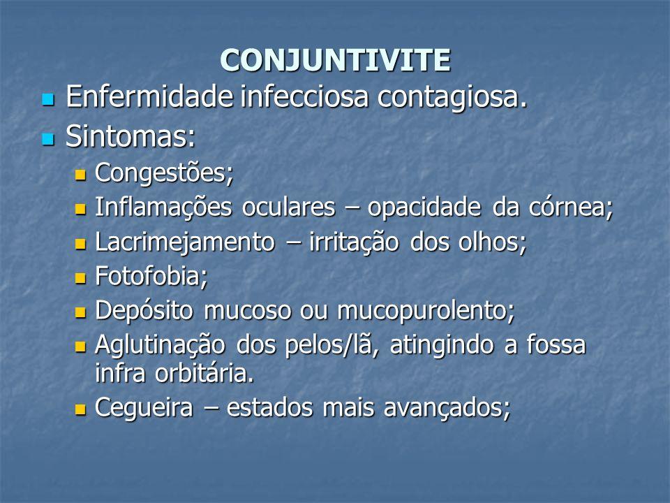 CONJUNTIVITE Enfermidade infecciosa contagiosa. Enfermidade infecciosa contagiosa. Sintomas: Sintomas: Congestões; Congestões; Inflamações oculares –