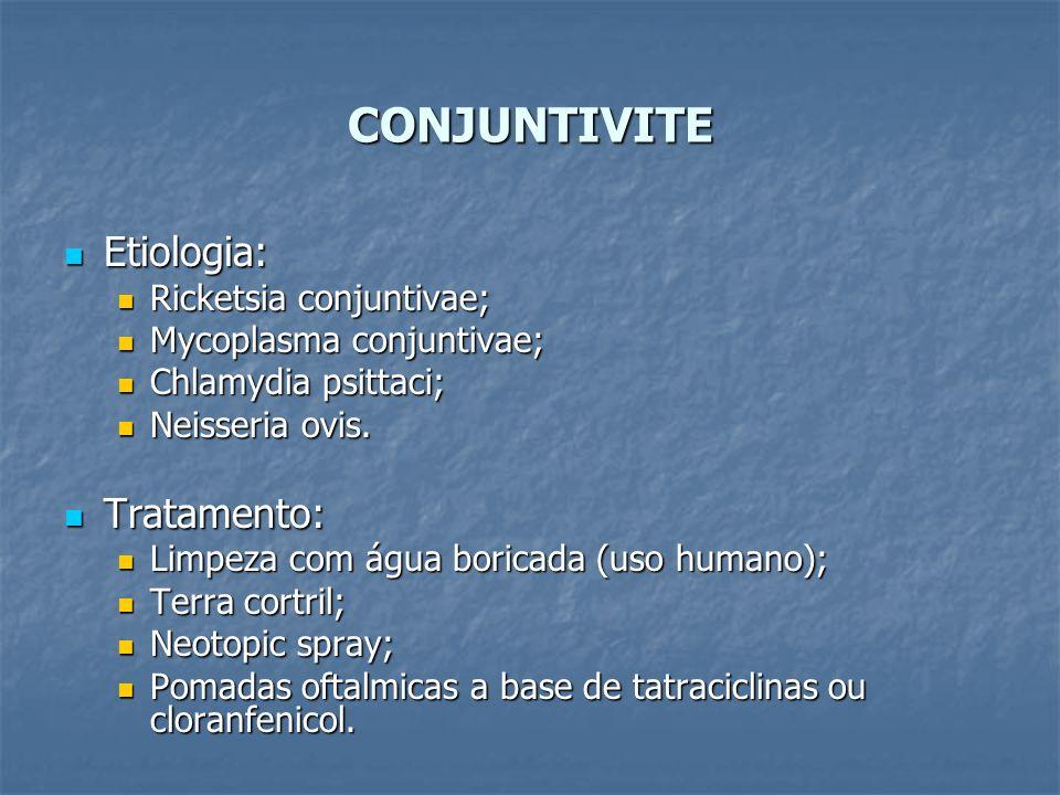 CONJUNTIVITE Etiologia: Etiologia: Ricketsia conjuntivae; Ricketsia conjuntivae; Mycoplasma conjuntivae; Mycoplasma conjuntivae; Chlamydia psittaci; C