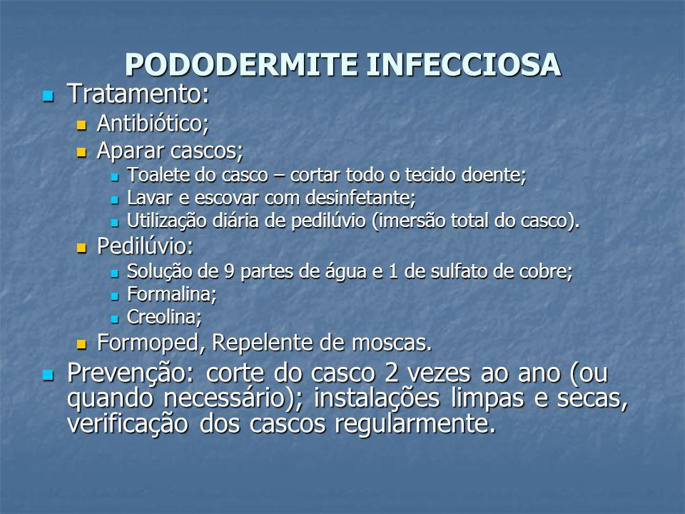 PODODERMITE INFECCIOSA Tratamento: Tratamento: Antibiótico; Antibiótico; Aparar cascos; Aparar cascos; Toalete do casco – cortar todo o tecido doente;