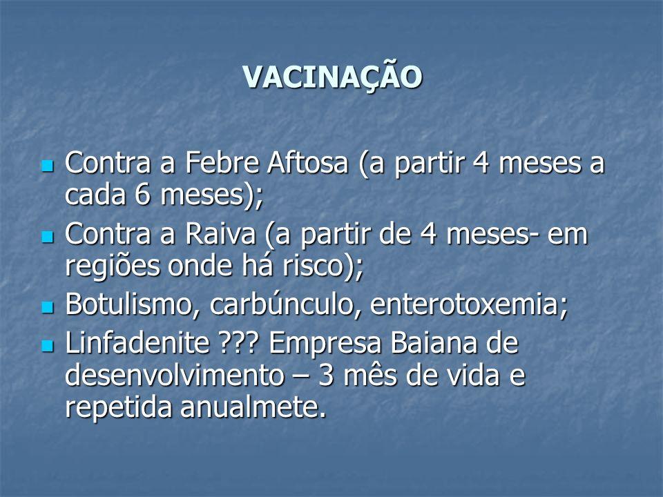 VACINAÇÃO Contra a Febre Aftosa (a partir 4 meses a cada 6 meses); Contra a Febre Aftosa (a partir 4 meses a cada 6 meses); Contra a Raiva (a partir d