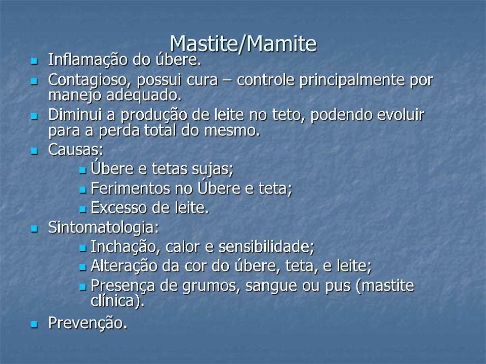 Mastite/Mamite Inflamação do úbere. Inflamação do úbere. Contagioso, possui cura – controle principalmente por manejo adequado. Contagioso, possui cur