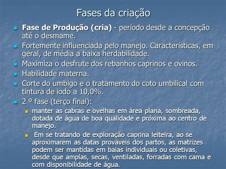 Fases da criação Fase de Produção (cria) - período desde a concepção até o desmame. Fase de Produção (cria) - período desde a concepção até o desmame.