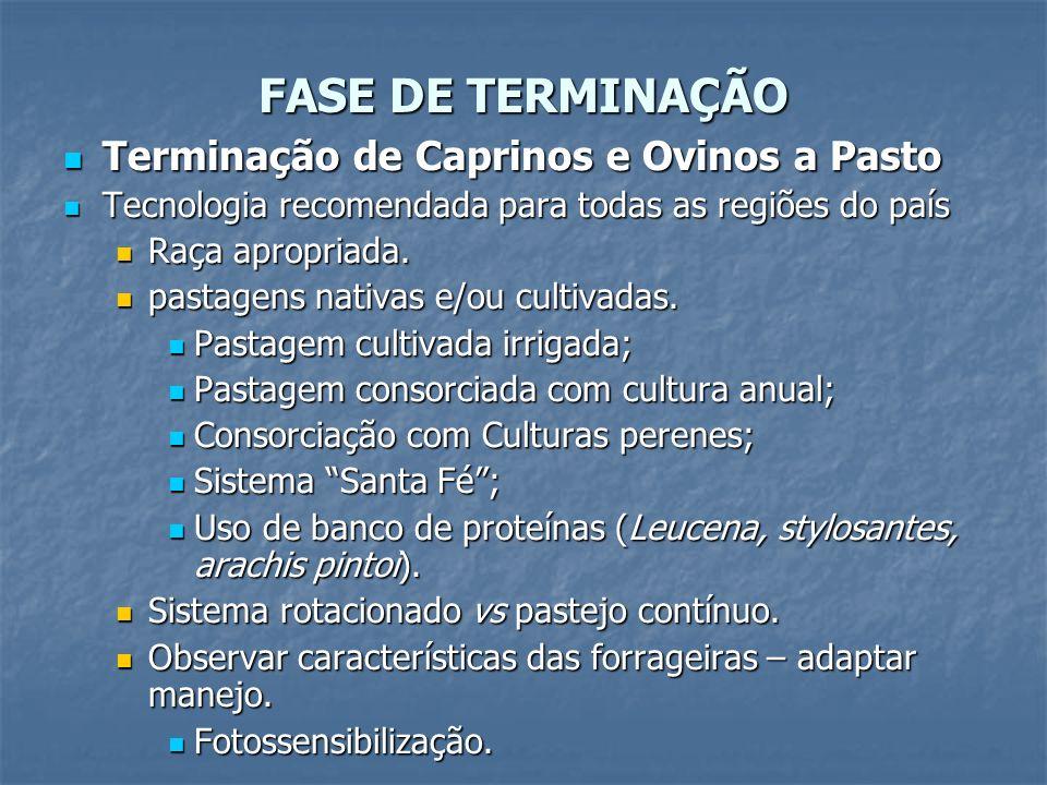 FASE DE TERMINAÇÃO Terminação de Caprinos e Ovinos a Pasto Terminação de Caprinos e Ovinos a Pasto Tecnologia recomendada para todas as regiões do paí