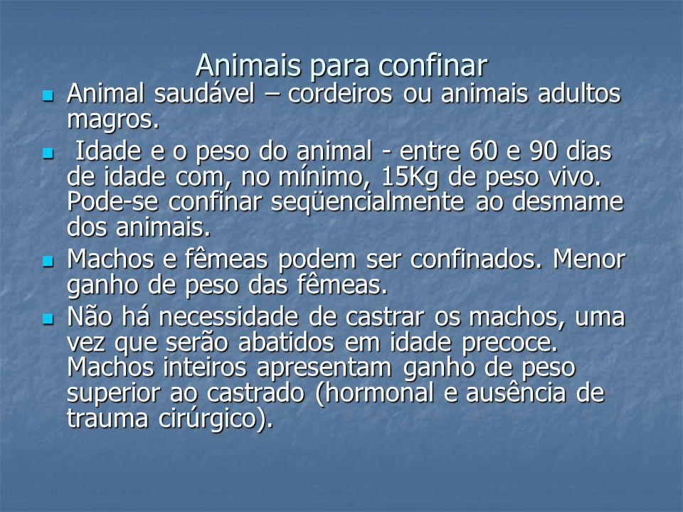 Animais para confinar Animal saudável – cordeiros ou animais adultos magros. Animal saudável – cordeiros ou animais adultos magros. Idade e o peso do