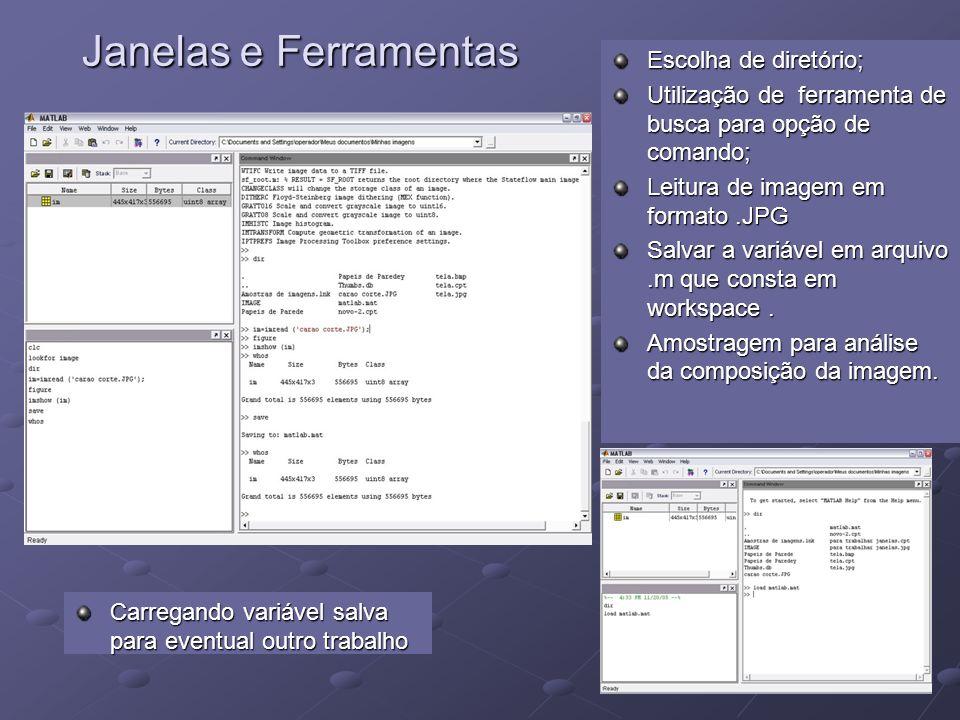 Janelas e Ferramentas Janelas e Ferramentas Escolha de diretório; Utilização de ferramenta de busca para opção de comando; Leitura de imagem em format