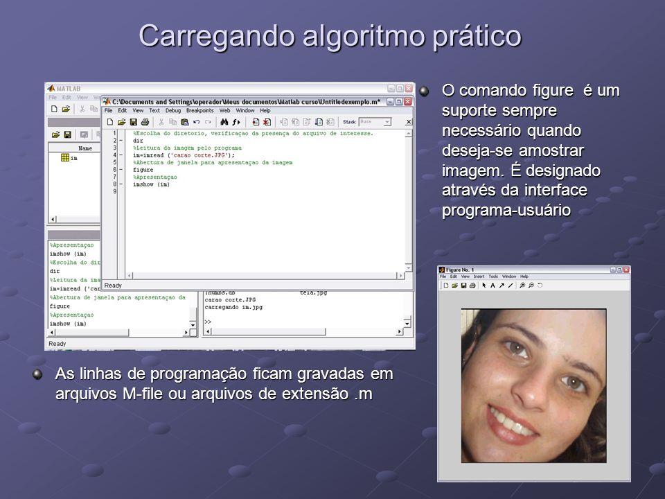 Carregando algoritmo prático As linhas de programação ficam gravadas em arquivos M-file ou arquivos de extensão.m O comando figure é um suporte sempre