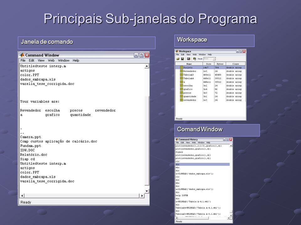 Principais Sub-janelas do Programa Janela de comando Workspace Comand Window