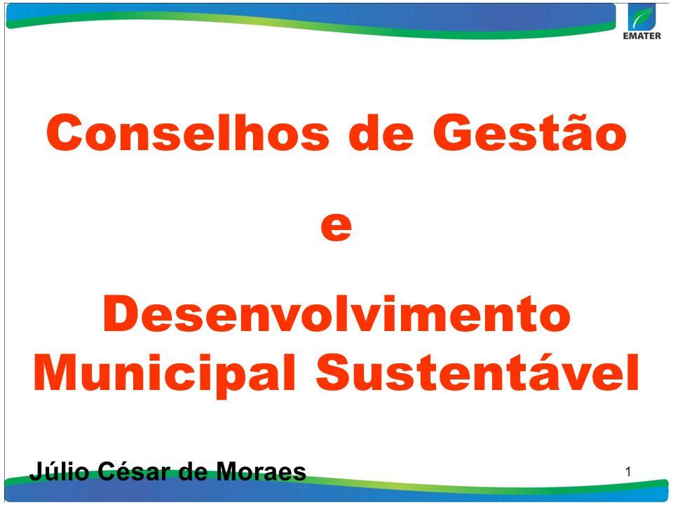 1 Conselhos de Gestão e Desenvolvimento Municipal Sustentável Júlio César de Moraes