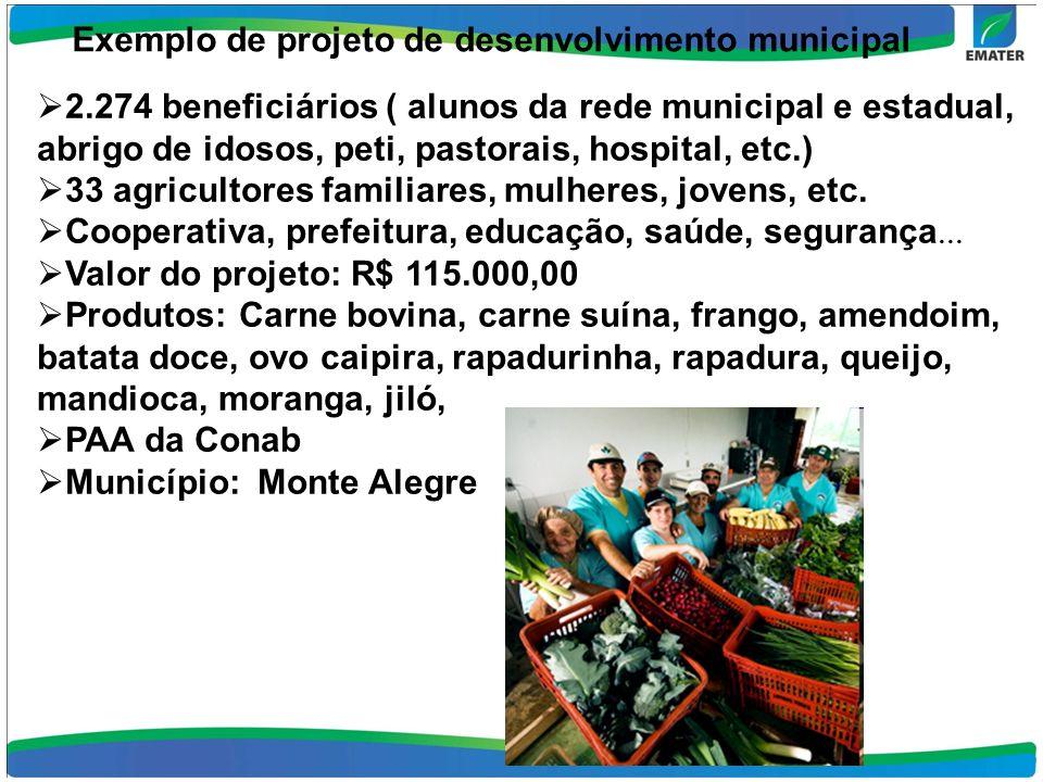 Exemplo de projeto de desenvolvimento municipal 2.274 beneficiários ( alunos da rede municipal e estadual, abrigo de idosos, peti, pastorais, hospital, etc.) 33 agricultores familiares, mulheres, jovens, etc.