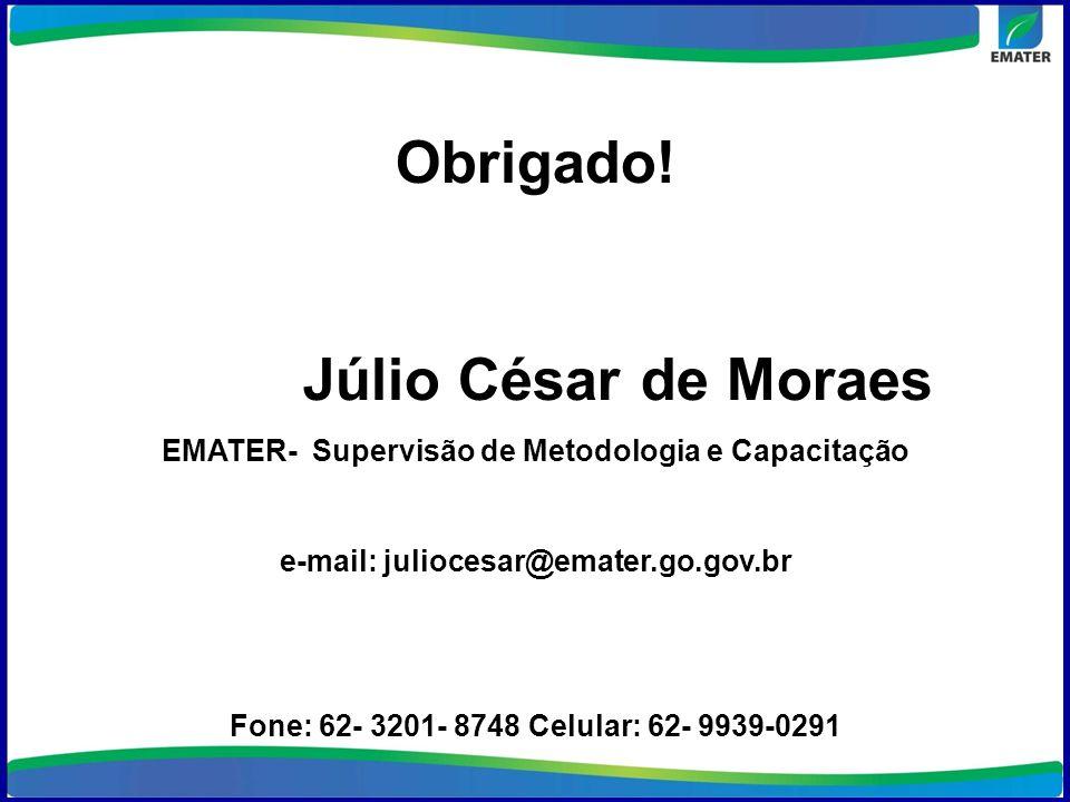 Obrigado! Júlio César de Moraes EMATER- Supervisão de Metodologia e Capacitação e-mail: juliocesar@emater.go.gov.br Fone: 62- 3201- 8748 Celular: 62-