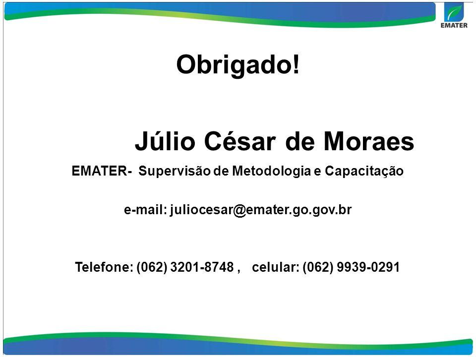 Obrigado! Júlio César de Moraes EMATER- Supervisão de Metodologia e Capacitação e-mail: juliocesar@emater.go.gov.br Telefone: (062) 3201-8748, celular