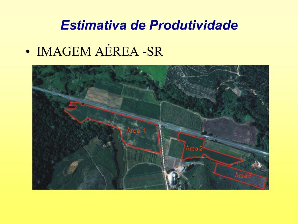 Estimativa de Produtividade IMAGEM AÉREA -SR Área 1 Área 2 Área 3