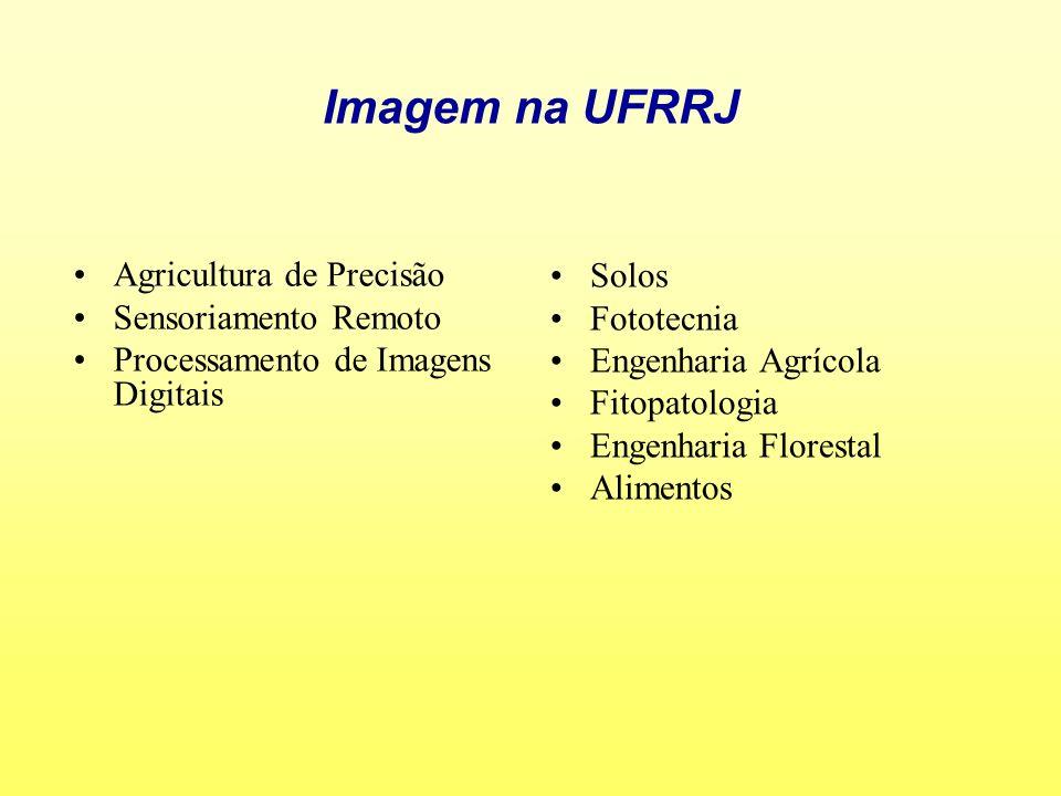Imagem na UFRRJ Agricultura de Precisão Sensoriamento Remoto Processamento de Imagens Digitais Solos Fototecnia Engenharia Agrícola Fitopatologia Enge