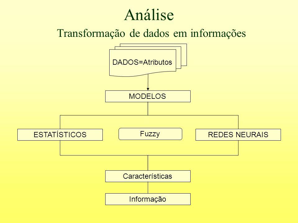 Análise ESTATÍSTICOSREDES NEURAIS MODELOS Características Informação Transformação de dados em informações DADOS=Atributos Fuzzy