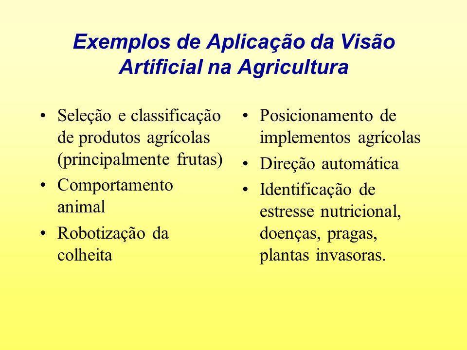 Exemplos de Aplicação da Visão Artificial na Agricultura Seleção e classificação de produtos agrícolas (principalmente frutas) Comportamento animal Ro