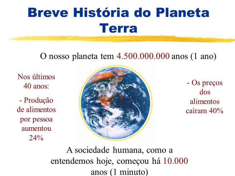 Breve História do Planeta Terra O nosso planeta tem 4.500.000.000 anos (1 ano) A sociedade humana, como a entendemos hoje, começou há 10.000 anos (1 m
