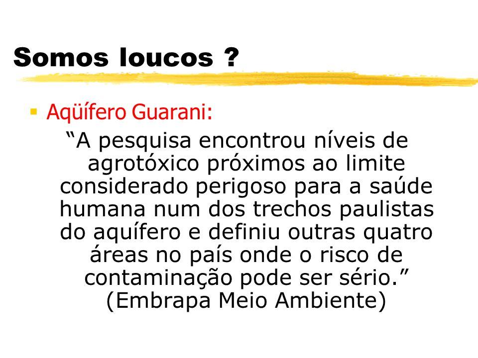 Somos loucos ? Aqüífero Guarani: A pesquisa encontrou níveis de agrotóxico próximos ao limite considerado perigoso para a saúde humana num dos trechos