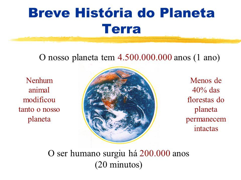 Breve História do Planeta Terra O nosso planeta tem 4.500.000.000 anos (1 ano) O ser humano surgiu há 200.000 anos (20 minutos) Nenhum animal modifico