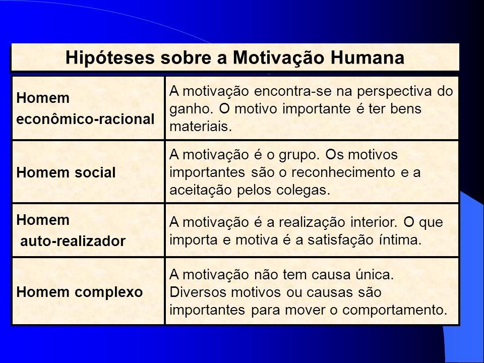 A motivação não tem causa única. Diversos motivos ou causas são importantes para mover o comportamento. A motivação é a realização interior. O que imp