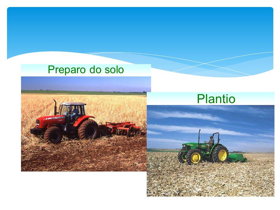 Preparo do solo Plantio