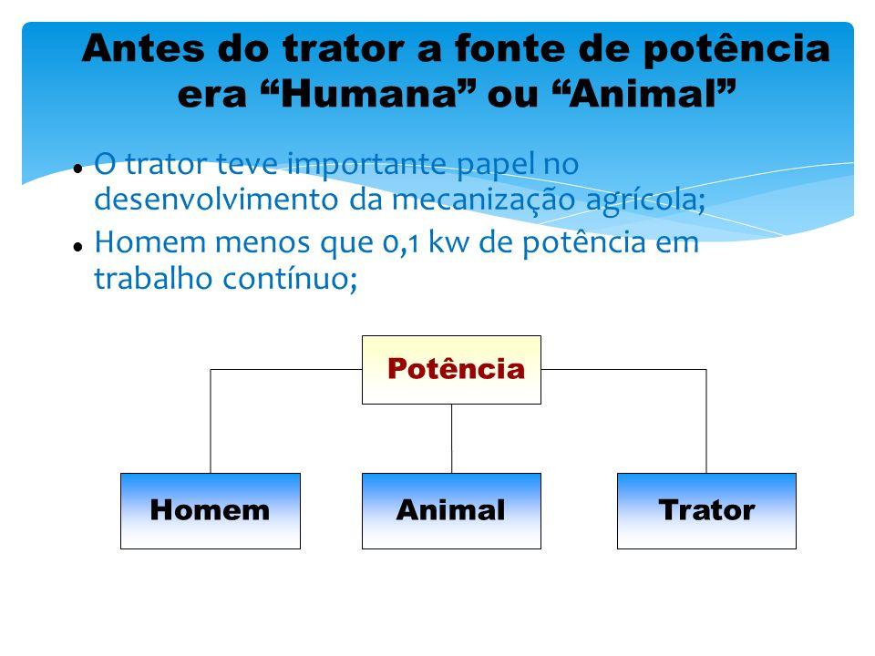 Potência média de animais Fonte: Boletim da Divisão de Mecanização Agrícola, DEMA, Secr.