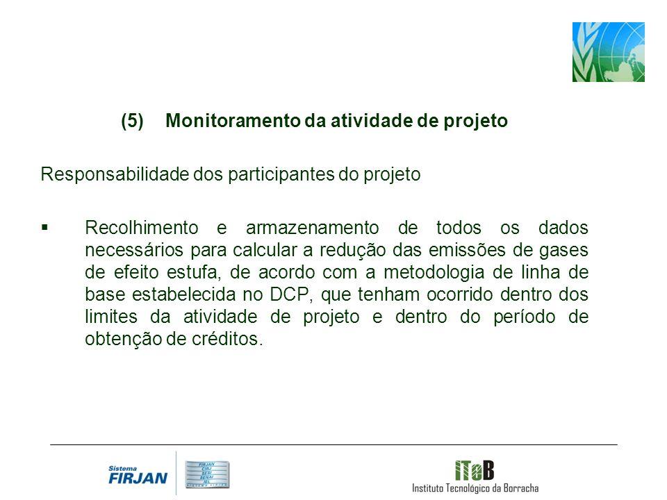 Monitoramento da atividade de projeto Responsabilidade dos participantes do projeto Recolhimento e armazenamento de todos os dados necessários para ca