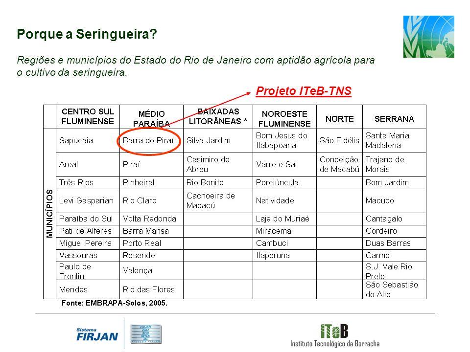 Projeto ITeB-TNS Porque a Seringueira? Regiões e municípios do Estado do Rio de Janeiro com aptidão agrícola para o cultivo da seringueira.