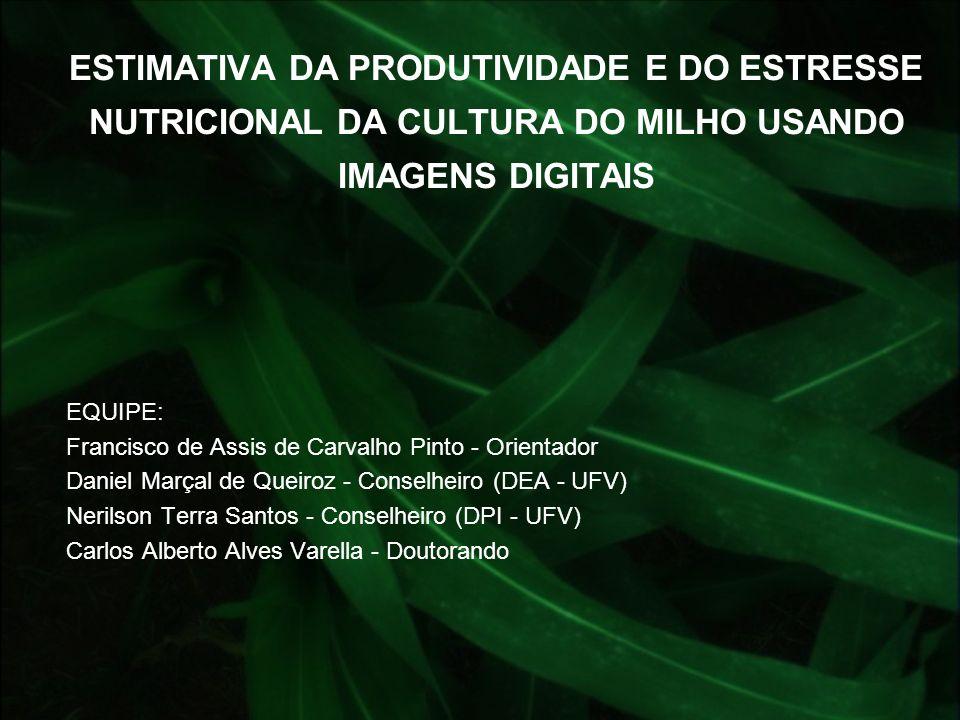 ESTIMATIVA DA PRODUTIVIDADE E DO ESTRESSE NUTRICIONAL DA CULTURA DO MILHO USANDO IMAGENS DIGITAIS EQUIPE: Francisco de Assis de Carvalho Pinto - Orien