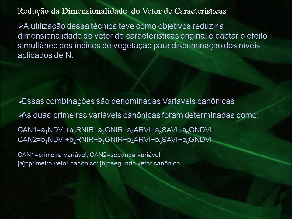Redução da Dimensionalidade do Vetor de Características Essas combinações são denominadas Variáveis canônicas CAN1=a 1 NDVI+a 2 RNIR+a 3 GNIR+a 4 ARVI