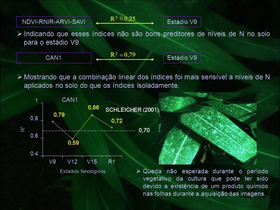 NDVI-RNIR-ARVI-SAVIEstádio V9 25,0R 2 Indicando que esses índices não são bons preditores de níveis de N no solo para o estádio V9. CAN1Estádio V9 79,