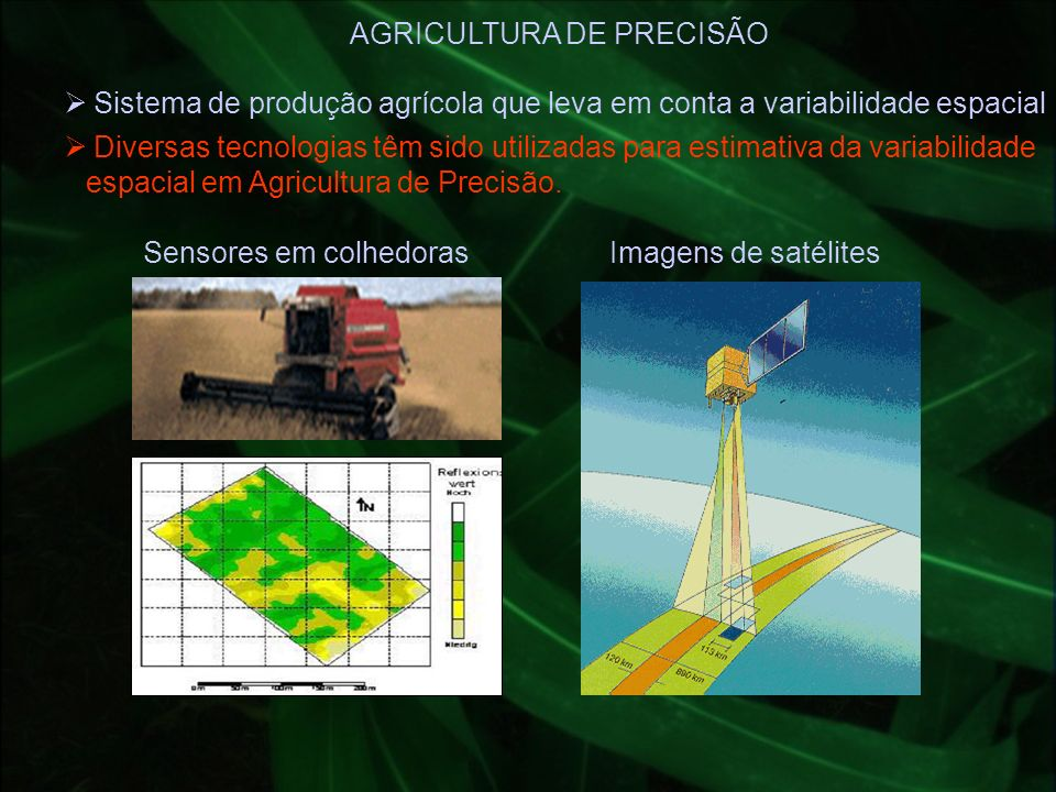 Sistema de produção agrícola que leva em conta a variabilidade espacial AGRICULTURA DE PRECISÃO Imagens de satélitesSensores em colhedoras Diversas te