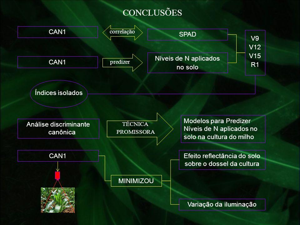 CONCLUSÕES CAN1 correlação SPAD CAN1 predizer Níveis de N aplicados no solo V9 V12 V15 R1 Índices isolados Análise discriminante canônica Modelos para