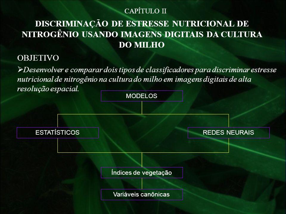 CAPÍTULO II DISCRIMINAÇÃO DE ESTRESSE NUTRICIONAL DE NITROGÊNIO USANDO IMAGENS DIGITAIS DA CULTURA DO MILHO OBJETIVO Desenvolver e comparar dois tipos