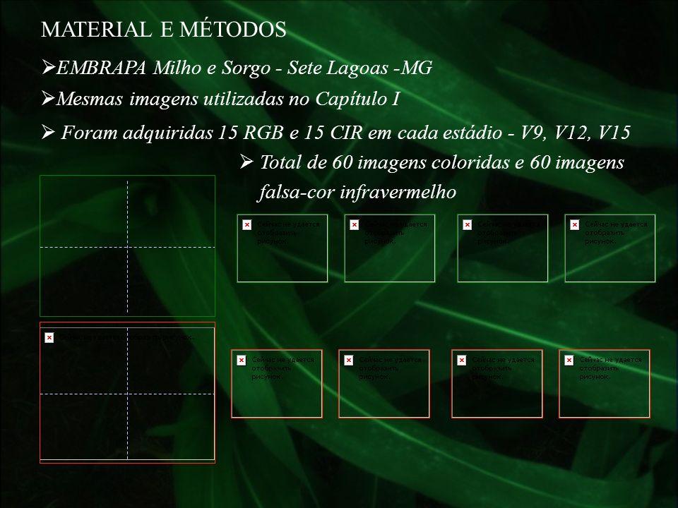 EMBRAPA Milho e Sorgo - Sete Lagoas -MG Mesmas imagens utilizadas no Capítulo I MATERIAL E MÉTODOS Foram adquiridas 15 RGB e 15 CIR em cada estádio -
